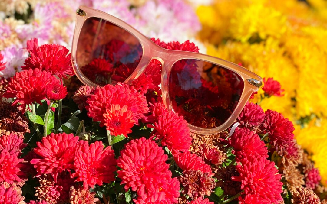 5 Reasons Why You Should Be Wearing Sunglasses This Summer