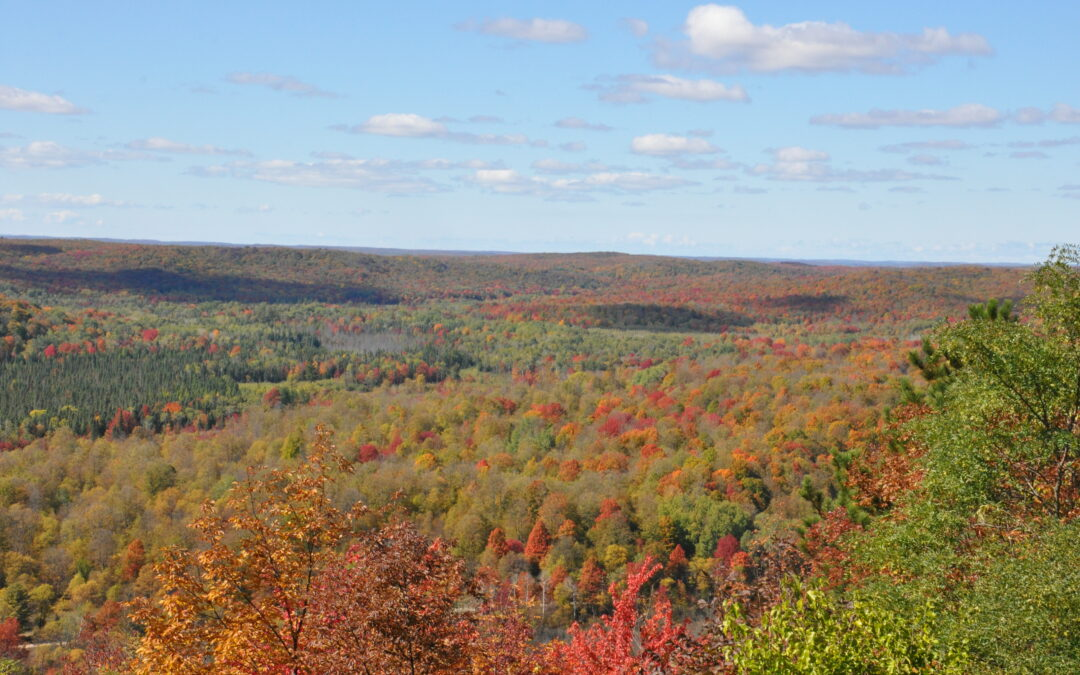 8 Things to Do in the Fall Around Saugatuck